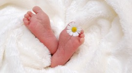 Baby's Legs Image Download