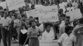 Boycott Wallpaper Background