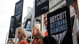 Boycott Wallpaper High Definition