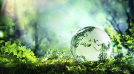 Earth Day Wallpaper Download