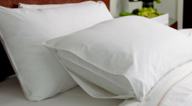 Feather Bed Wallpaper Full HD