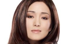 Gong Li High Quality Wallpaper