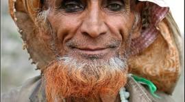 Old Man's Beard Image