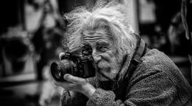 Old Man's Beard Photo Download
