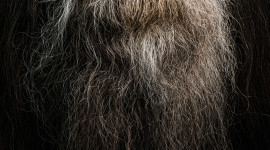 Old Man's Beard Wallpaper For IPhone