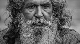 Old Man's Beard Wallpaper For Mobile#3