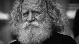 Old Man's Beard Wallpaper Free