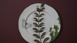 Painted Plates Photo Download