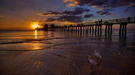 Pier Sunsets Wallpaper