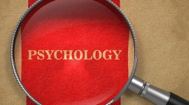 Psychologist Wallpaper Gallery
