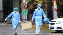 Quarantine In Thailand Wallpaper Background