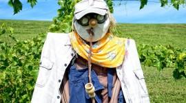 Scarecrow Field Photo Free