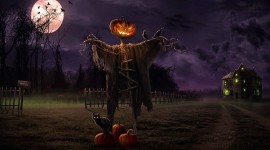 Scarecrow Field Picture Download