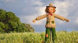 Scarecrow Field Wallpaper