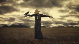 Scarecrow Field Wallpaper For Desktop