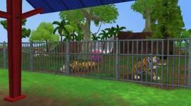 Zoo Tycoon 2 Desktop Wallpaper