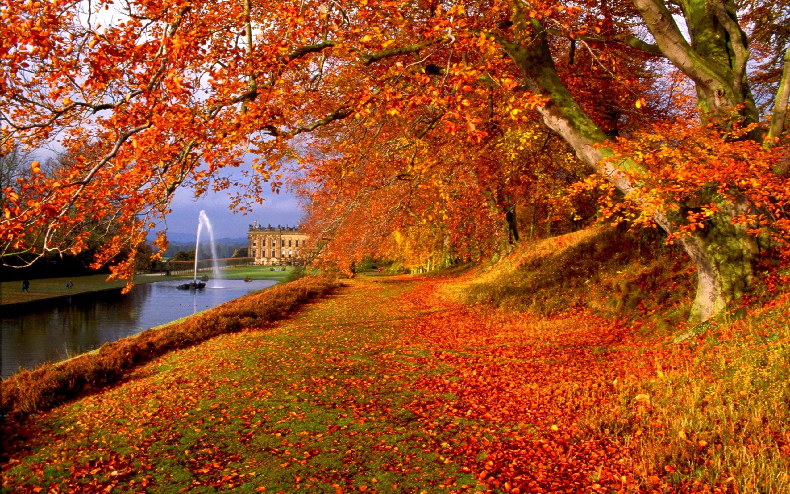 Autumn Wallpapers High Quality Download Free