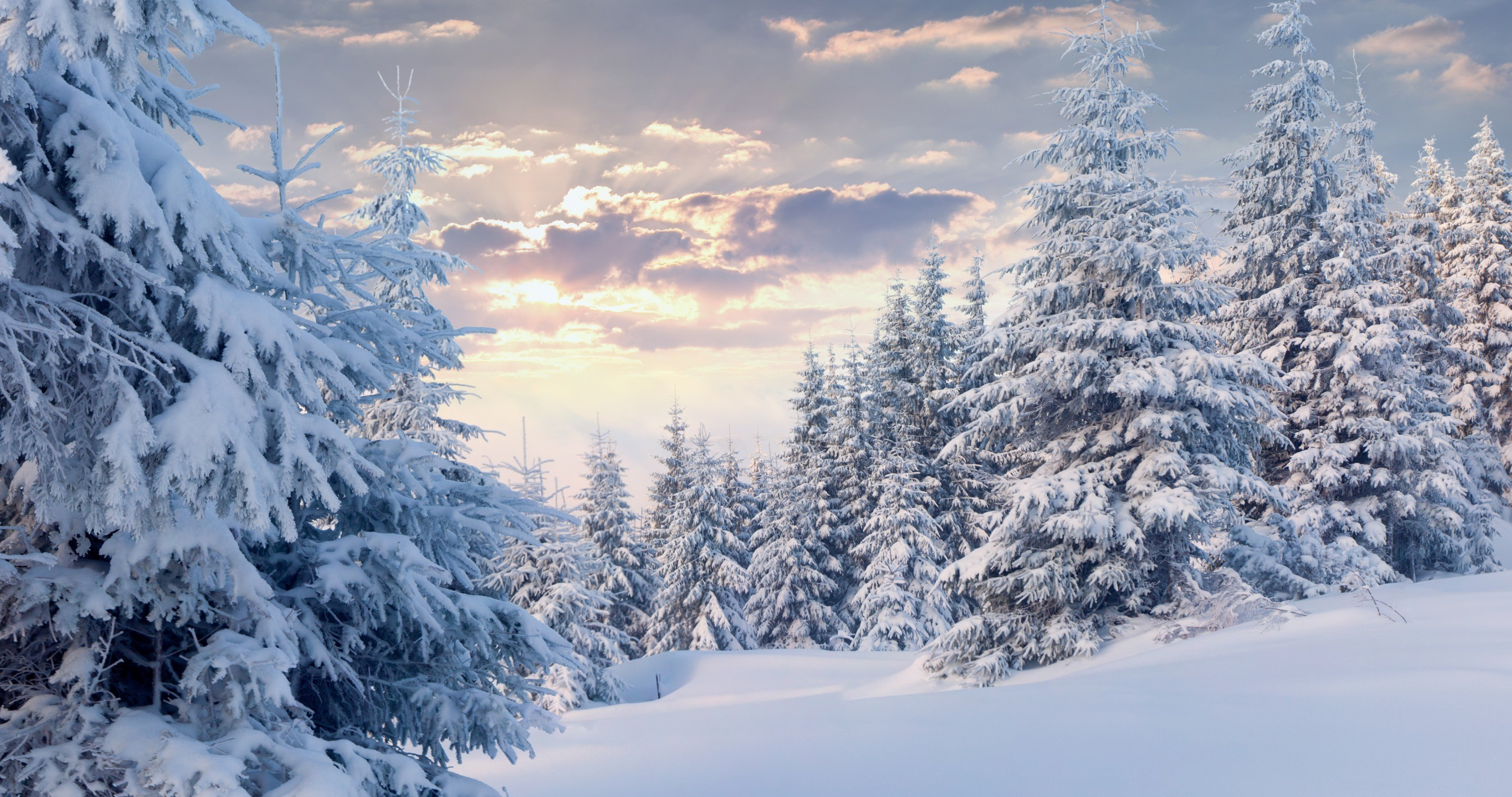 4K Snow Wallpapers High Quality | Download Free