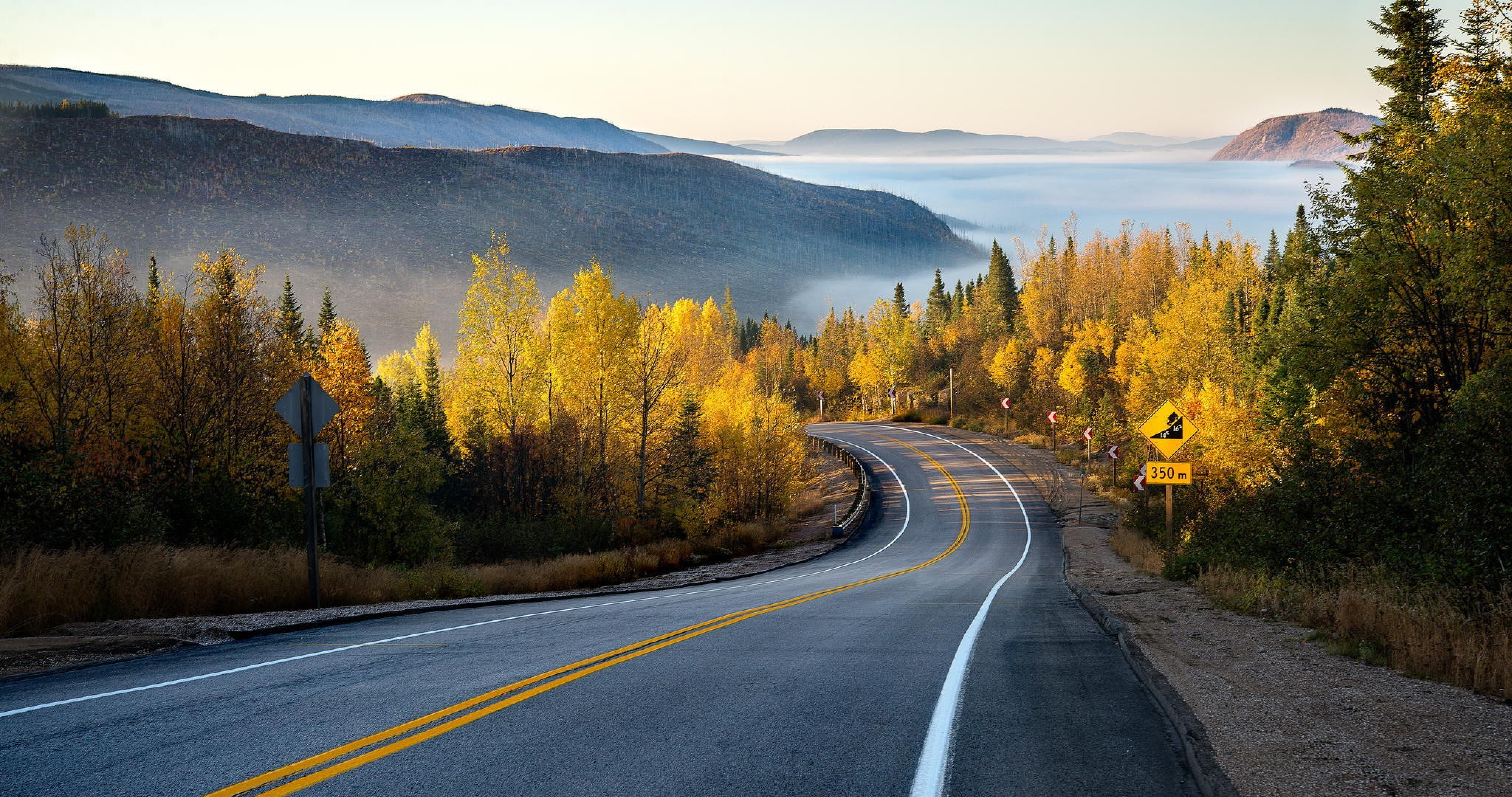дорога осенний лес небо бесплатно