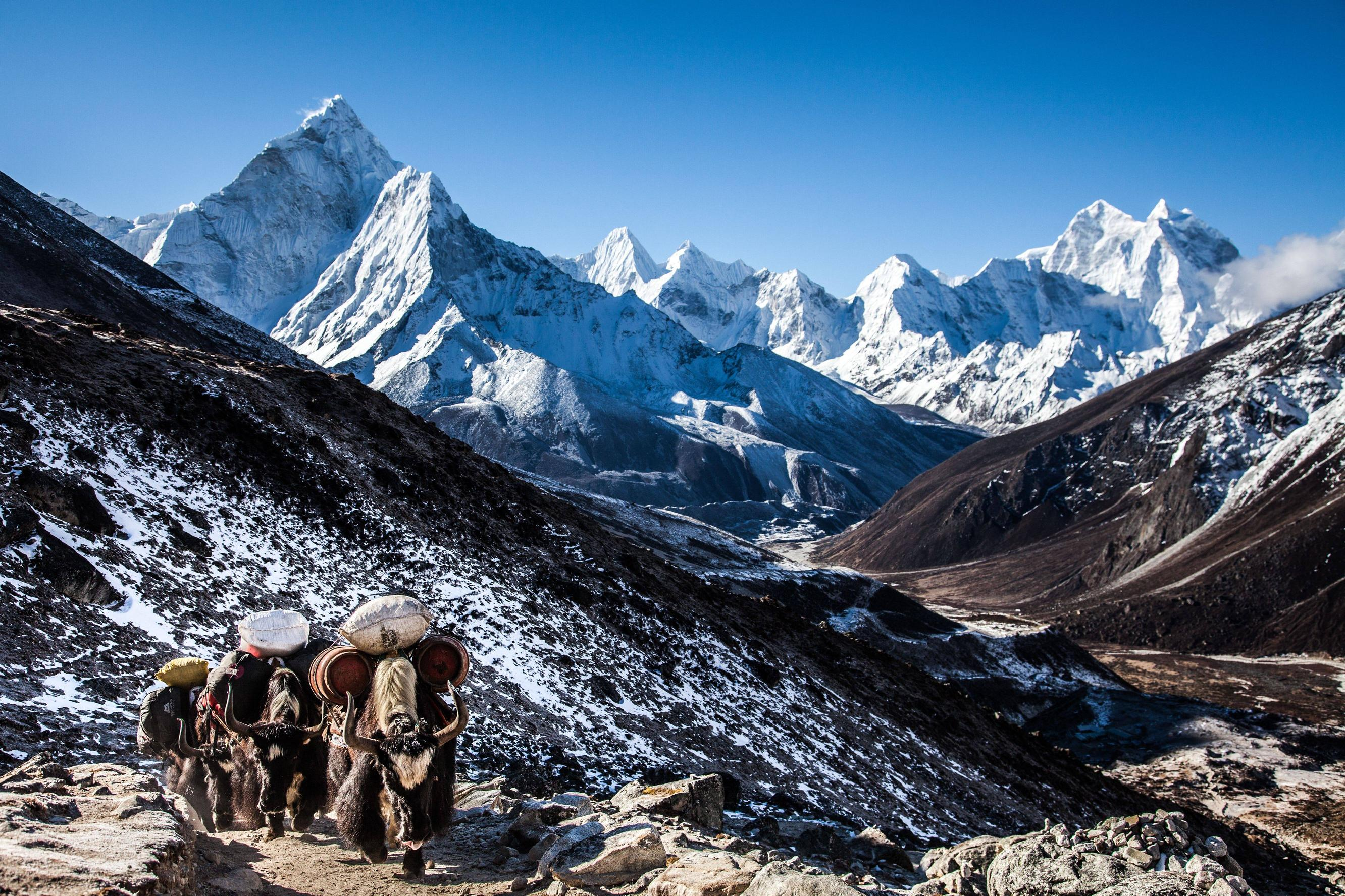 Nepal Wallpapers High Quality   Download Free