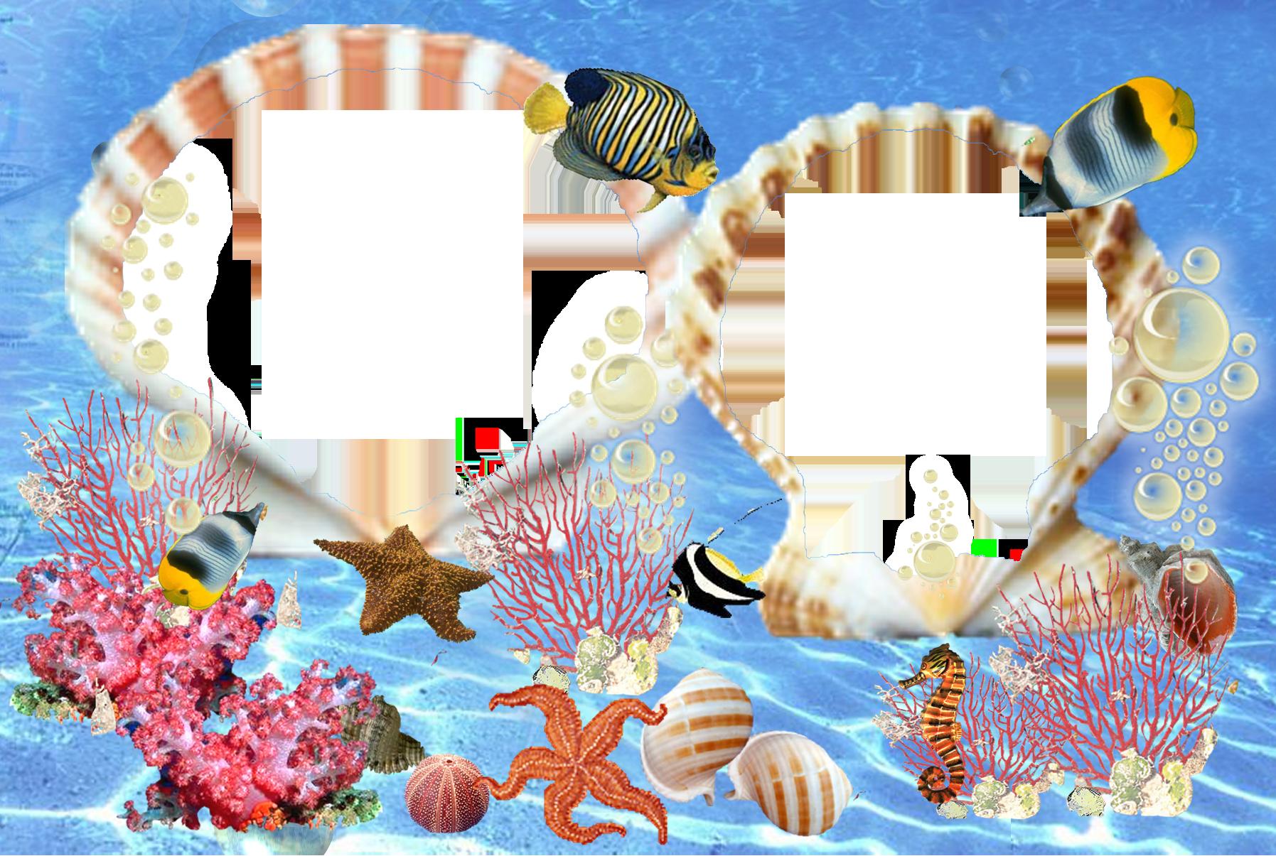 Вставить фото в море