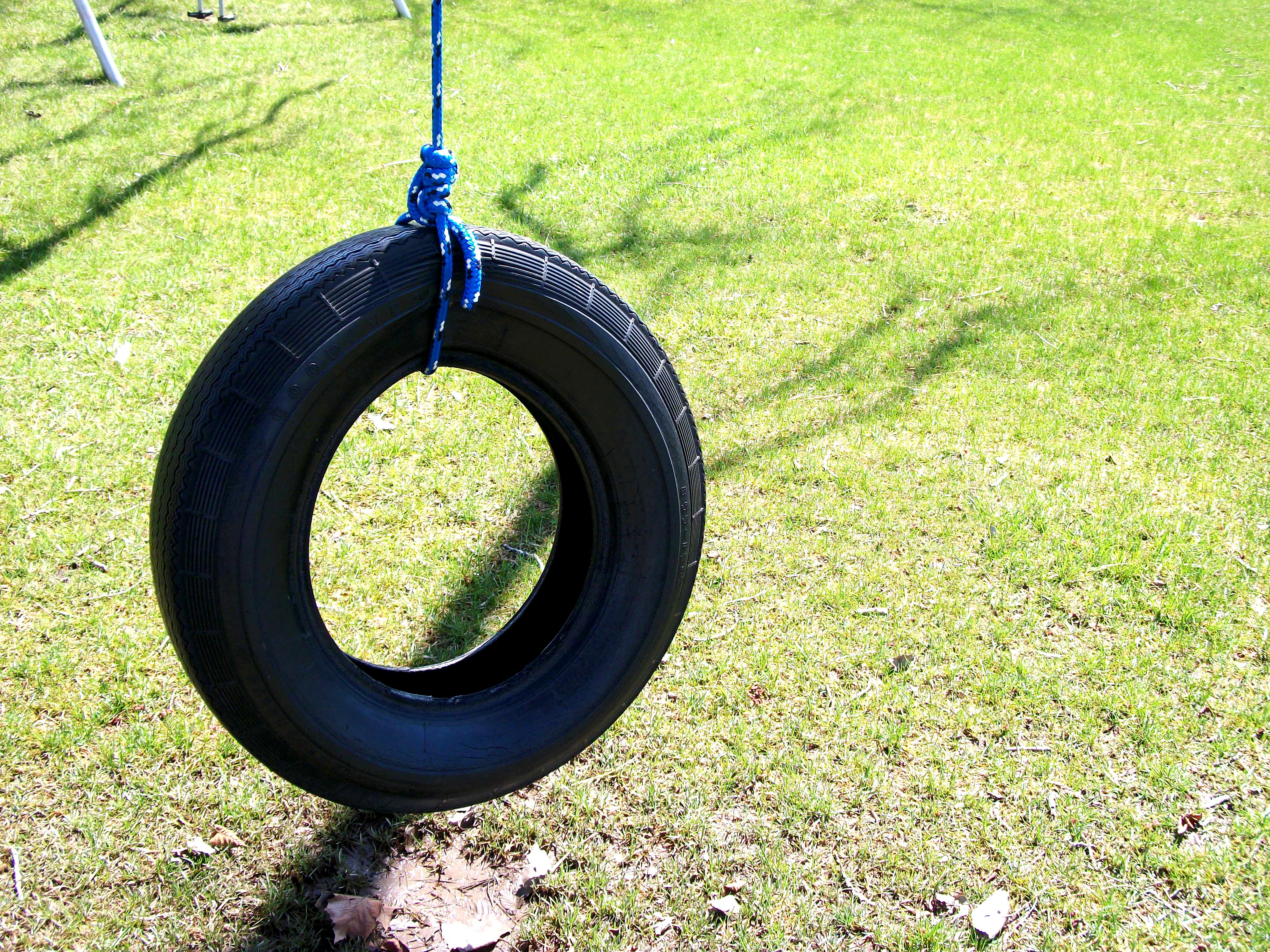Mature Woman On Tyre Swing Portrait High